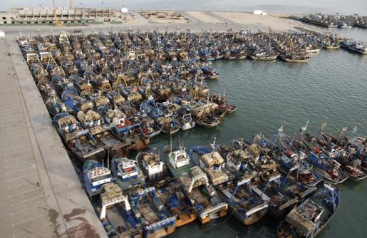 Agadir port pèche