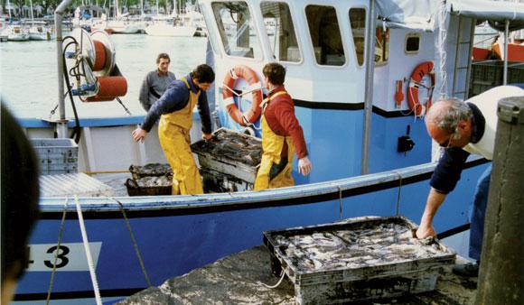 Les statuts les camarades de classe sur la pêche