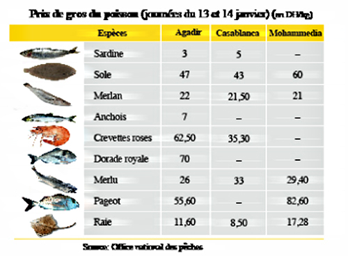 Poisson prix for Prix poisson aquarium
