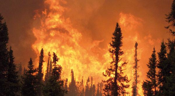 Incendie-Foret-chtouka-ait-baha-(2013-05-24)