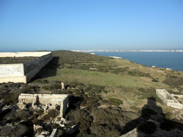 Essaouira vue depuis l'ïle de Mogador