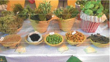 La cueillette à la racine des plantes aromatiques profite moins aux habitants locaux qu'aux intermédiaires et  grossistes pour qui c'est un commerce juteux bien qu'illégal