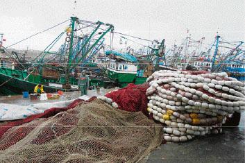 Les professionnels fustigent l'application d'une TVA à 20% sur les engins et matériel de pêche à cause des particularités du secteur: vente en franchise de TVA, contradiction avec le statut d'exportateur, absence d'une loi dédiée à cette taxe…