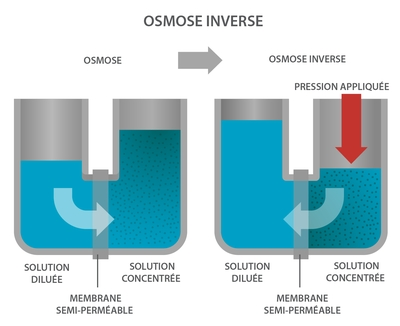 Osmose et Osmose inverse