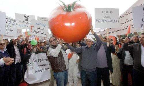 L'Union européenne (UE) et le Maroc ont trouvé un accord sur les conditions douanières d'accès des tomates marocaines au marché européen, a annoncé vendredi la Commission européenne. /DR