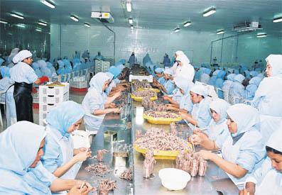 Trois projets collaboratifs R&D ont été menés. Ils sont relatifs à la fabrication de nouveaux produits à base de co-produits de poissons, à l'extraction de collagène à partir des écailles de sardine et à la valorisation enzymatique des huiles de poissons