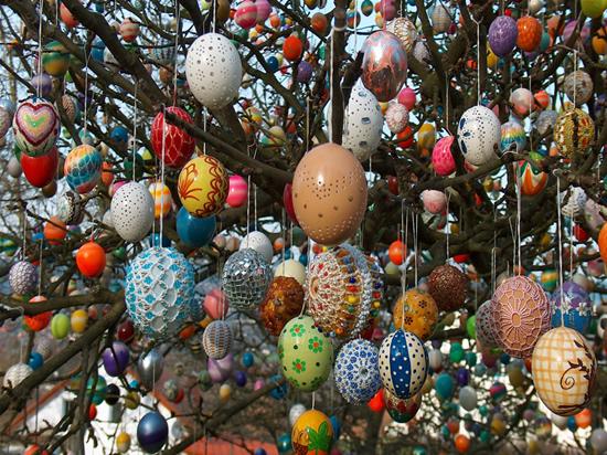 Un exemple exceptionnel est Saalfelder Ostereierbaum, un pommier dans le jardin de Volker Kraft en Thuringe. En 1965, ils ont commencé avec 18 oeufs, en 2012 il y avait plus de 10 000 œufs sur l'arbre d'oeuf Kraft Pâques.